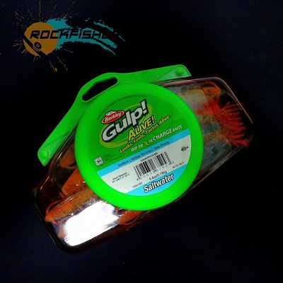Berkley Gulp Alive Hollow Shrimp 3in/8cm/NCH. Berkley Gulp Alive Hollow Shrimp 3in/8cm/NCH